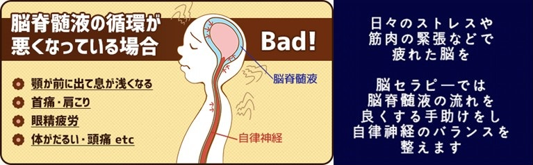 「脳疲労」を和らげるヒミツは脳脊髄液にあり